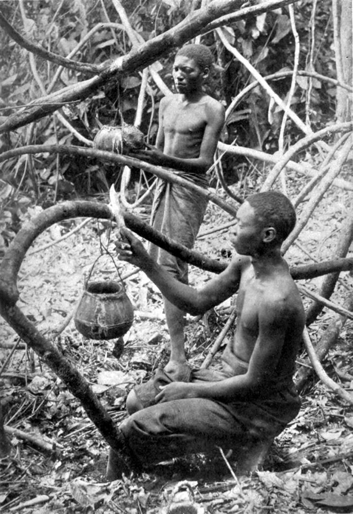 Collecting Rubber in Forest of Lusambo (Lualaba-Kassai) - p. 280